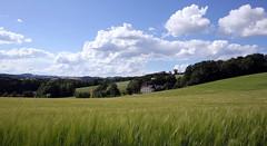 Wolkenstimmung über dem Mühlviertel (rubrafoto) Tags: sommer landwirtschaft wolken landschaft wetter stimmung mühlviertel ottensheim wolkenstimmung ooe witterung wolkenhimmel hügelland grünland wetterbild sommerlandschaft