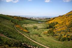 Another delightful day (Jean I Cresol) Tags: park uk green yellow landscape scotland edinburgh unitedkingdom path walk may holyrood 16th holyroodpark 2016