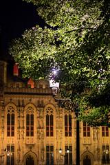Trees in Bruges (Mario Graziano) Tags: brugge vlaanderen belgium be bruges tree trees alberi city citt citta belgio