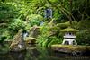 _ (www.matthewdowningphotography.com) Tags: usa green water leaves oregon america landscape waterfall canyon japaneseteagarden teagarden goldenhour japenese