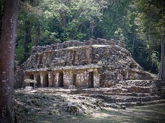DSC07970 (tomboy501) Tags: mexico maya guatemala mayanruins chiapas yaxchilan usumacintariver