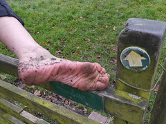 Footpath sole (Barefoot Adventurer) Tags: toes barefoot barefeet connected soles barefooted earthing barfuss barefooting dirtysoles barefoothiking strongfeet barefooter baresoles toughsoles wrinkledsoles callousedsoles earthsoles naturalsoles autumnsoles autumnbarefooting