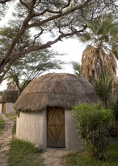 Thatched Roof In A Garden Hotel, Turkana Lake, Loiyangalani, Kenya (Eric Lafforgue) Tags: africa house vertical photography hotel day kenya nobody nopeople hut housing thatchedroof authentic habitation eastafrica turkana colorimage colourimage loiyangalani turkanalake colourpicture kenya201403112