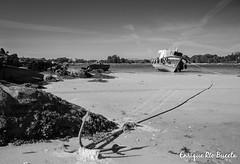 Carreirón - Illa de Arousa - BN