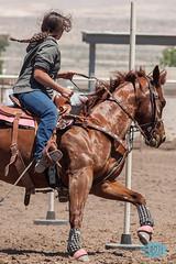 0521 IMG_8650 (JRmanNn) Tags: horses lasvegas hsa lvga hendersonsaddleassociation lasvegasgymkhanaassociation