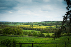 North Cotswolds - a walk in the countryside (judy dean) Tags: green yellow cotswolds farmland hills fields crops rapeseed 2016 judydean sonya6000