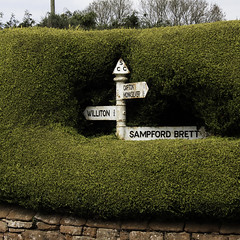 Directions From A Hedge (me'nthedogs) Tags: somerset hedge signpost sampfordbrett