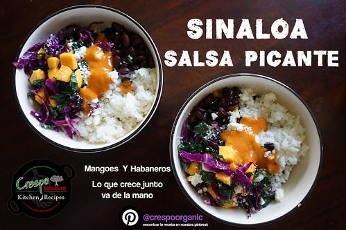 "Sinaloa Salsa Picante, Lo que crece junto va de la mano • <a style=""font-size:0.8em;"" href=""http://www.flickr.com/photos/139081453@N03/27118963495/"" target=""_blank"">View on Flickr</a>"