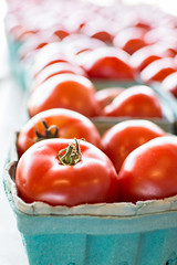 tomatoes (jojoannabanana) Tags: light summer fruit farmersmarket bokeh tomatoes rochester rochesterpublicmarket 3662016