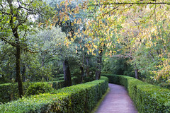 _DSC7595 (Robby68) Tags: vert marqueyssac jardin dordogne nature france soir suspendu