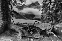 _MJE2715_HDR (mcrae221) Tags: banff moraine lake
