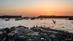 solpor no porto [Explored] (Rafa Lorenzo) Tags: sunset solpor puestadesol porto puerto port aguarda galicia miaterragalega