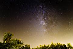 Milky Way (JSR-Photography) Tags: milkyway milky way stars night sky palm