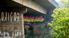 _DSC5975 (Mario C Bucci) Tags: saida fotografia pacheco paulo tellis mario bucci hugo shiraga fabio sideny roland grafites volu ii