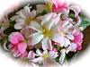 schöne Woche (radochla.wolfgang) Tags: gesehen blüten