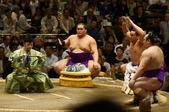 日馬富士 画像43
