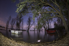 moonlight (Michele Tollapi) Tags: 16mm zenitar f28 umbria trasimeno lagotrasimeno zenitar16mmf28 umbrians nikondf