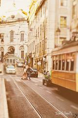 Walking in Lisboa (Tiziano De Donno) Tags: travel holiday colour portugal yellow photography lisboa tram strre