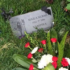 Vampira (katerz1) Tags: fone hollywoodforever mailanurmi