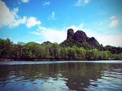 Kilim River (WiLL CWK) Tags: travel nature forest river landscape island photography woods scenery tour scenic mangrove malaysia langkawi kilim kedah mangroveforest geopark