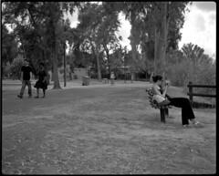 Park Hayarkon (Dan.Arad) Tags: fujifilm neopan 100 18 1100 acros 670 plaubel makina adox adonal
