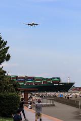 JAPAN AIRLINES | JAL | Boeing787-846 | JA832J | Tokyo Haneda Airport (akg414p010) Tags: tokyo evergreen boeing jl containership jal haneda hnd japanairlines hanedaairport   dreamliner 7878 rjtt  boeing787     b788  ja832j everlively