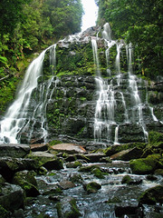 nelson falls - tasmania, australia 2 (Russell Scott Images) Tags: rain forest river waterfall cool rainforest australia nelson falls tasmania