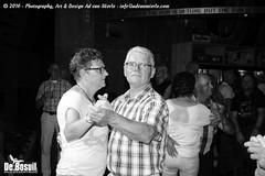 2016 Bosuil-Het publiek bij de 30th Anniversary Steady State 83-ZW