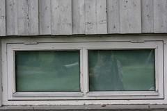 IMG_8385 (Siw Linda) Tags: summer nature outdoors grainy building grain school old windows tree dark moody