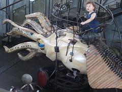 girl riding a mechanical squid (d0gwalker) Tags: merrygoround carrousel carousel cephalopod squid nantes iledenantes machinesdelile paysdelaloire loireatlantique