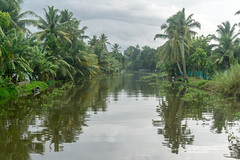Appelley (Kerala), India (DitchTheMap) Tags: 2016 appelley backwaters india kerala landscape nature vacation alappuzha allepey alleppey alleppy asia background backwater beautiful blue boat boating canal coconut fishing flickr green houseboat indian industry kumarakom palm reflection river rural ship sky tourism traditional transportation travel trees tropical water