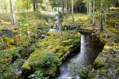 När naturen tagit över industrin (lena.fredin) Tags: fs160911 natur fotosondag