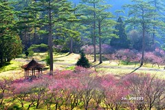 Jin_a06203 (Chen Liang Dao  hyperphoto) Tags:                vacation