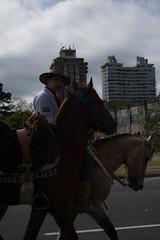 DSC_5225 (neyde zys) Tags: bandadabrigada brigadamilitar desfilefarroupilha gauchos indumentaria prendas tradicao