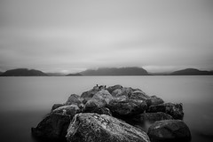 Tranquility IV (Ferdinand Bart Alst - Pixel Your Soul Photography) Tags: longexposure le bw blackwhite blackandwhite nature landscape norway norge scandinavia fjord rock blurred nikon wideangle