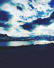 Haukeli (sveinmagnekrok) Tags: haukeli sky sun snow water nature sheep view nice roadtrip mountain norway