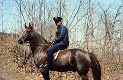 (Armin Schuhmann) Tags: nikomat nikkormat ft3 1978 nikon 50mm 50mmf2 50mmnikkorf20ai 50mmf2ai ai f2 nikkor manual focus vintage lens prime nikonl37haze l37 haze kodak kodakkodacolor2100 kodacolor kodacolor2 100asa color negative filmphotography filmscan filmisnotdead film 35mm c41 argentique analogue analogic analog montreal quebec canada mount royal police horse cop spring hill ride brown old believeinfilm ishootfilm 100 kodacolor100 filmphoto shootfilm buyfilmnotmegapixels analogo pelicula filme пленка longlivefilm northeast vintagecamera vintagelens analogico analogica фотопленка