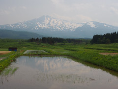 Mirror of rice fields (murozo) Tags: mountain snow reflection water field japan rice 日本 山 雪 akita 秋田 鳥海山 mtchokai 田 水鏡 nikaho にかほ