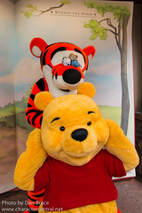 Winnie the Pooh (Near the Many Adventures of Winnie the Pooh)