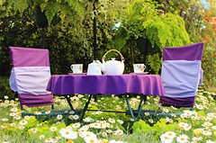 Welcome to the tea! (Julia_Kul) Tags: birthday pink party summer food white house english cakes cup beautiful grass kids daisies vintage garden table fun toys happy high chair toddler afternoon purple tea drink outdoor linen background meadow violet curly teapot dining cloth tablecloth serving teaset teaservice tablelayout