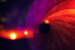 Singularity (kirill.jankowsky) Tags: iris sunset sun abstract black color star aperture hole space conception singularity солнце черная космос дыра jankowsky