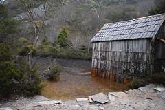Rain on Crater Lake (dracophylla) Tags: tasmania craterlake boatshed cradlemountainlakestclairnationalpark