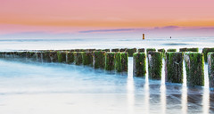 Poles (kjeldvdh) Tags: wood sunset sea sky sun plant seascape beach clouds outside cool twilight long exposure gloomy outdoor pastel horizon calm structure clear kelp poles buoy buoyant
