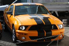 Ford Mustang Shelby GT 500 Cobra 2009 (RL GNZLZ) Tags: ford cobra mustang 2009 v8 shelbygt500