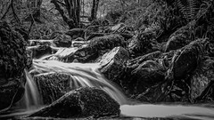 Inchewan Burn- B&W, long exposure (grahamrobb888) Tags: longexposure trees water scotland blackwhite rocks stream perthshire waterspray inchewanburn panasonictz60 on1pics