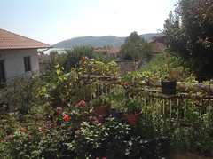 IMG_3990 (mouzenidischalkidiki) Tags: antique delphi greece thessaloniki ellada peloponnese