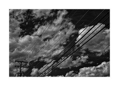 Wichita Lineman (sorrellbruce) Tags: summer sky bw texture lines clouds contrast nikon shapes d750 forms he tension wichitalineman lr6 framefun seleniumtoning glenncampbell silverefexpro nikkor50mmf18g petebridgwoodsharpeningpresets