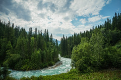 Meandering (Carrie Cole Photography) Tags: trees canada tourism nature water berg forest river landscape rockies bc britishcolumbia scenic rockymountains mountrobson berglaketrail meandering robsonriver robsonvalley carriecole