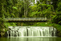 Malanda Falls (Kent Wilkins) Tags: trees water waterfall rainforest rocks long exposure peaceful australia calm falls jungle cairns silky tablelands atherton nq malanda northqueensland2016
