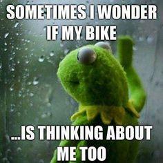 Biker Quote -122 (BikerKarl2013) Tags: store quote badass helmet motorcycles stuff motorcycle biker 122